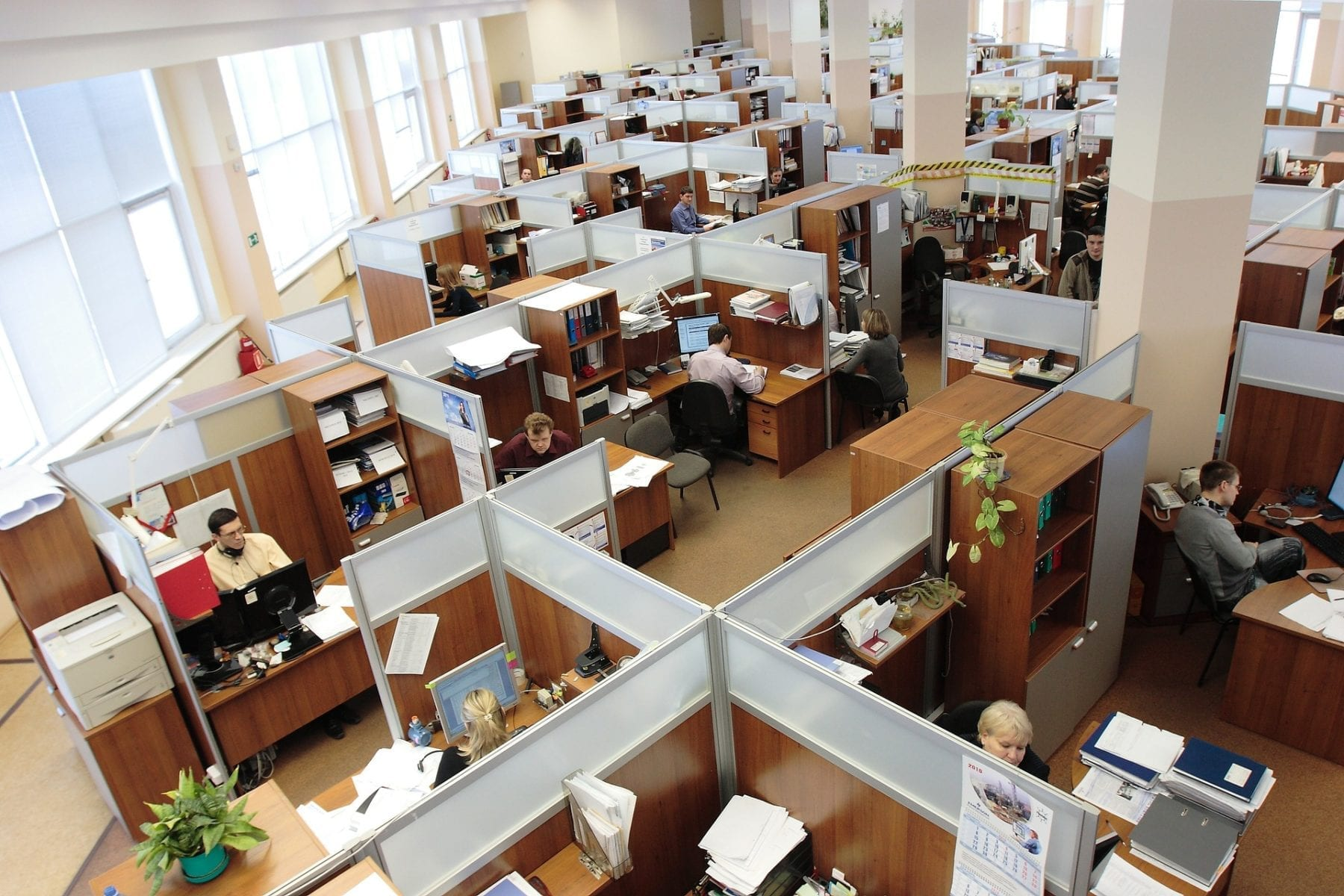 A shot of an office with cubicles.